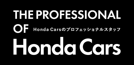 THE PROFESSIONAL OF Honda Cars